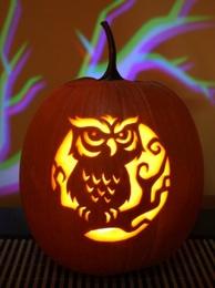 3_OwlPumpkin