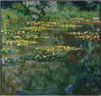 WaterLilyPond