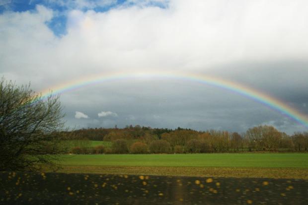 13_rainbow picture.jpg