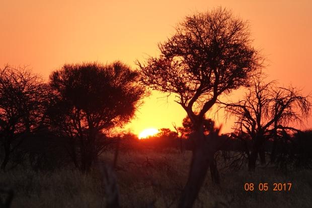 2_African Sunrise